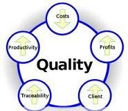 دانلود مقاله پیرامون مدیریت کیفیت