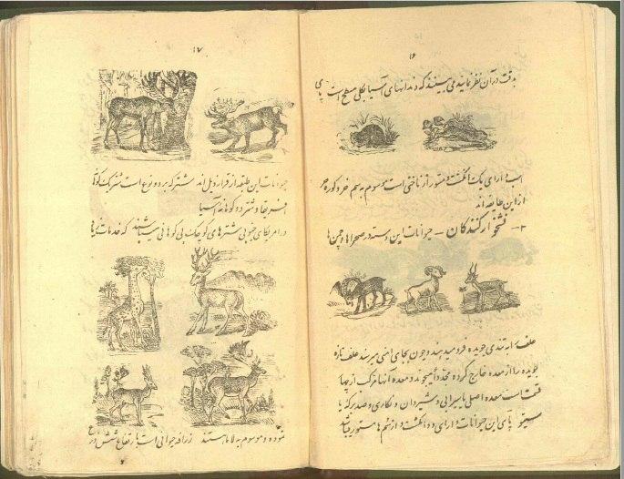 کتاب کمیاب علم اشیا