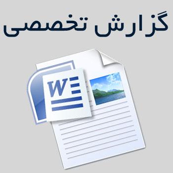 گزارش تخصصی درس زبان و ادبیات فارسی (۱۱صword)