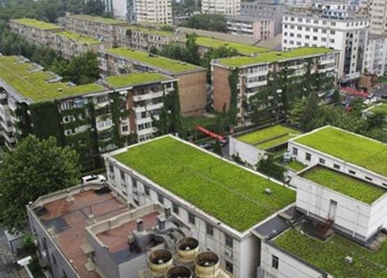 معماری پایدار،معماری سبز