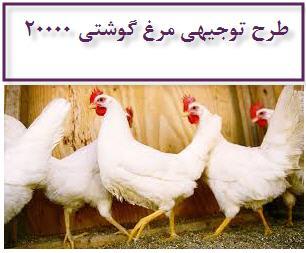 طرح توجیهی مرغ گوشتی 20000 قطعه ای 1395