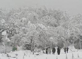 پروژه آماده: بررسی بارگذاری ناشی از بارهاي گرانش، برف و باد و بارهای مرده و زنده (136 صفحه فایل ورد - word)