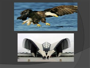پاورپوینت سازه در معماری (انسان، طبیعت، معماری)