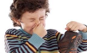 بی نظیرترین راه حلهای از بین بردن بوی بد ؛درجاهای مختلف منزل و محل کار