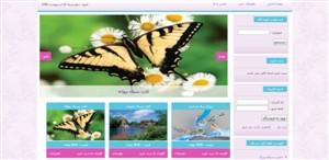 پروژه دانشجویی طراحی سایت فروشگاه کارت پستال با php