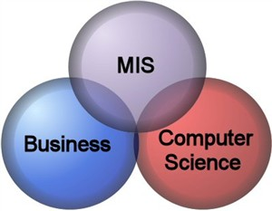 سیستم مدیریت اطلاعات MIS