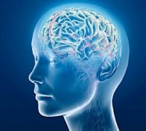 کتاب راههای تقویت حافظه و ذهن