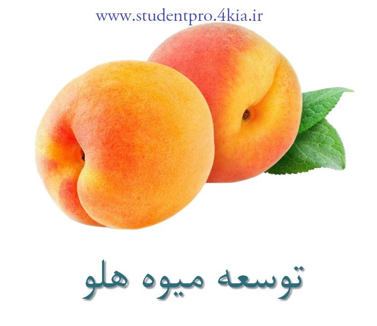 پاورپوینت ارائه توسعه و کاشت میوه هلو