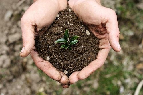 دانلود مقاله اثر فرسایش آبی در کاهش حاصلخیزی خاک word