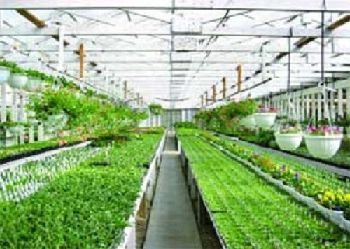 دانلودمقاله در مورد نحوه ی طراحی گلخانه هوشمند(pdf)