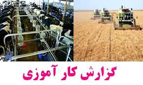 کارآموزی کشاورزی
