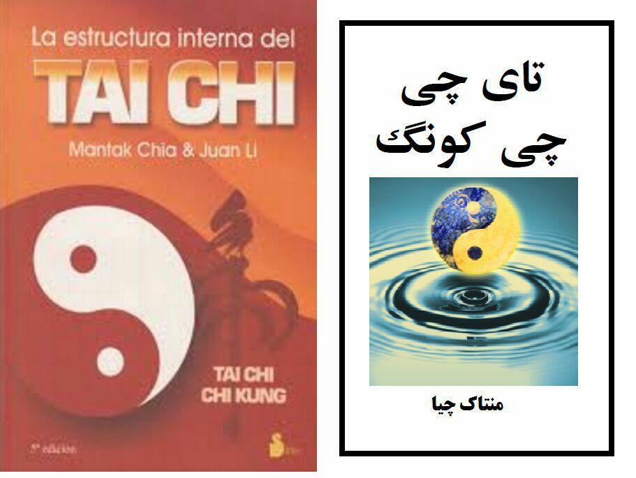 کتاب تای چی، چی کونگ