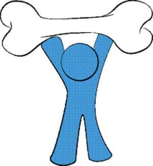 تحقیق پوکی استخوان و تأثیر ورزش بر آن