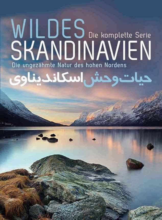 فیلم مستند زیبای حیات وحش اسکاندیناوی دوبله فارسی ( قسمت اول ) 43 دقیقه محصول کشور آلمان با فرمتMkv با کیفیت عالی 720p