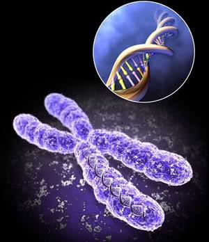 کروموزوم پروکاریوتی بی ثبات (فقط متن فارسی)