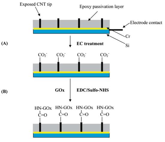 پاورپوینت کامل و جامع با عنوان بررسی نانوالکترودهای مورد استفاده در ثبت سیگنال های عصبی در 29 اسلاید
