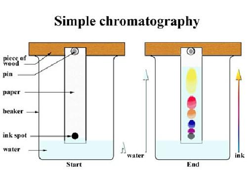 پاورپوینت کامل و جامع با عنوان کروماتوگرافی مایع با کارایی بالا (HPLC) در 39 اسلاید