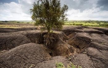 پاورپوینت کامل و جامع با عنوان فرسایش خاک و انواع آن در 60 اسلاید