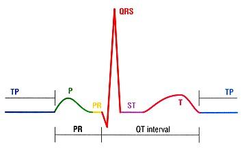 پاورپوینت کامل و جامع با عنوان مبانی تفسیر الکتروکاردیوگرام (ECG) و ثبت فعالیت الکتریکی قلب در 90 اسلاید