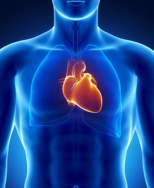 پاورپوینت کامل و جامع با عنوان نارسایی و وقفه در دستگاه گردش خون، تنفس و کمک های اولیه مربوط به آن در 38 اسلاید