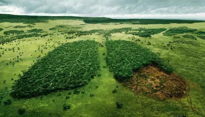 پاورپوینت کامل و جامع با عنوان کلیات محیط زیست و عوامل آلودگی آن در 102 اسلاید
