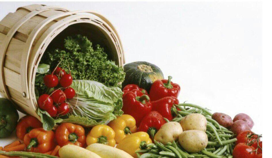 سبزیکاری و صیفی کاری در منزل