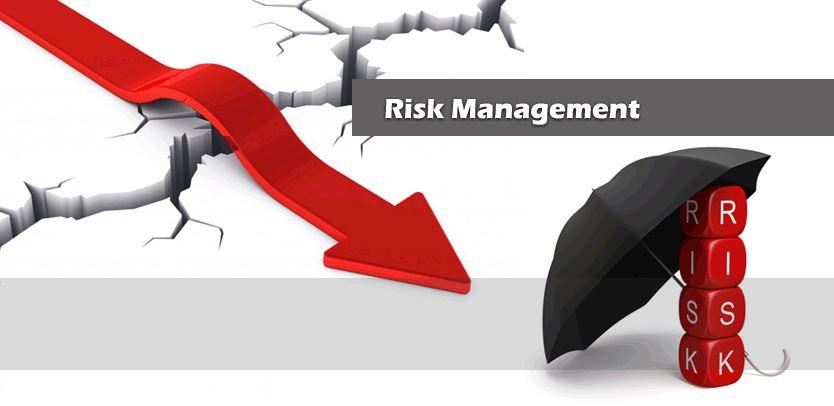دانلود پاورپوینت استراتژی مدیریت ریسک