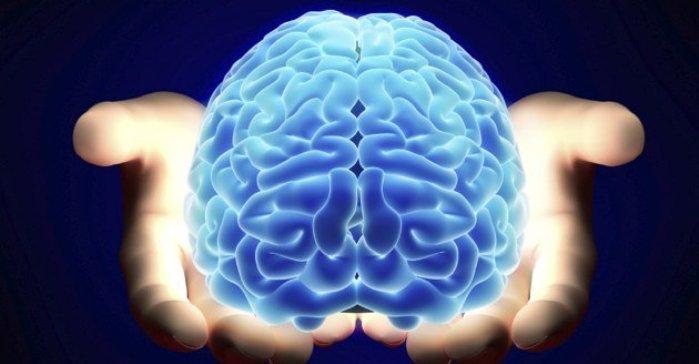 دانلود پاورپوینت همه چیز در مورد مغز