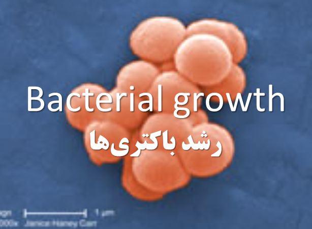 دانلود پاورپوینت رشد باکتریها(Bacterial growth)