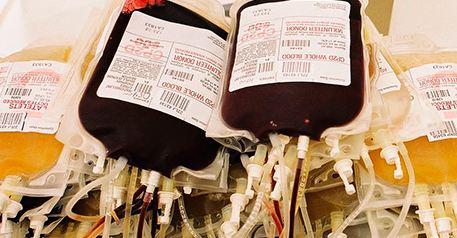 دانلود پاورپوینت فراوردههای خونی