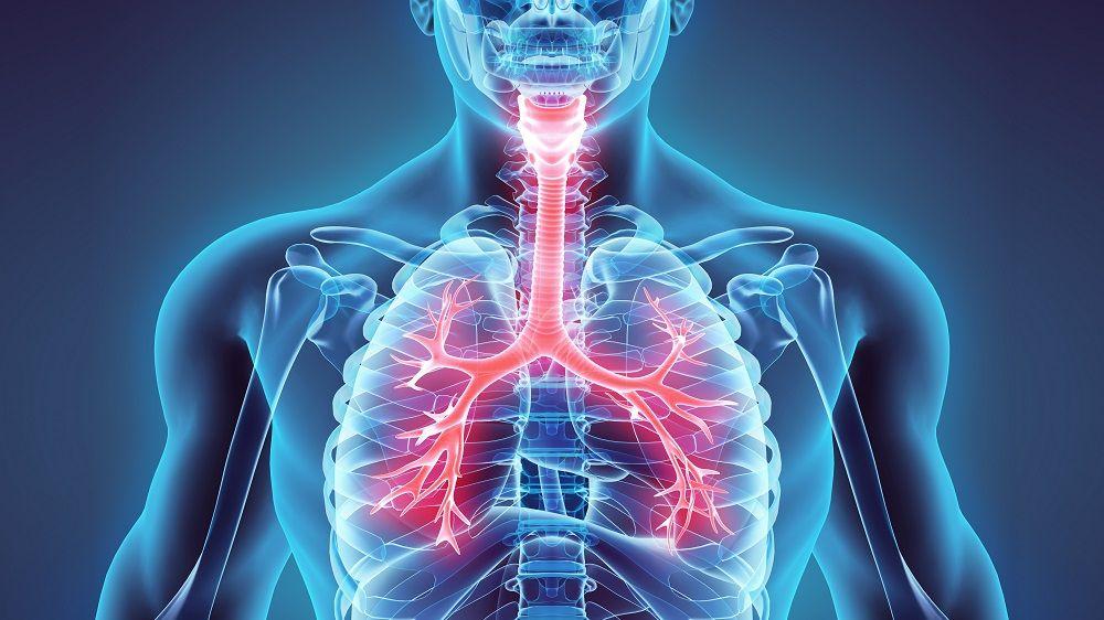 دانلود پاورپوینت بیماریهای تنفسی