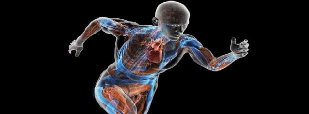 دانلود پاورپوینت ابزارهای ارزيابي ناراحتي بدن(Body Discomfort Assessment Tools)