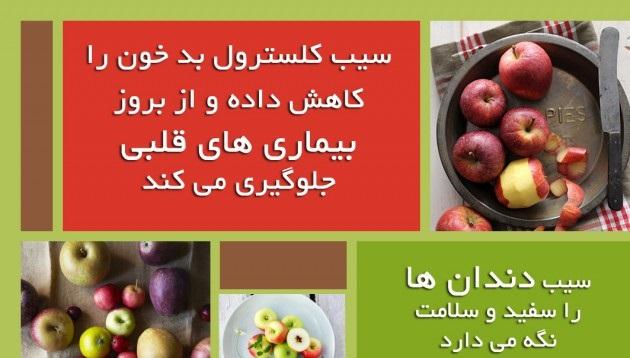 کلیات گیاه شناسی(سیب)