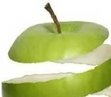 کلیات گیاه شناسی (سیب راباپوست بخورید)