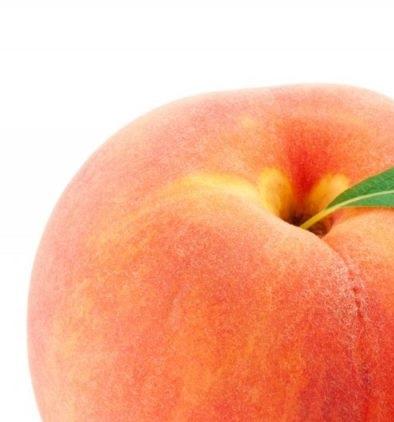 کلیات گیاه شناسی(هلو)