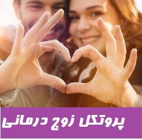 پروتكل زوج درماني مبتني بر پذيرش و تعهد
