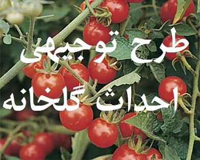 طرح توجیهی و کار آفرینی احداث گلخانه (خیار – گوجه - فلفل - بادمجان)
