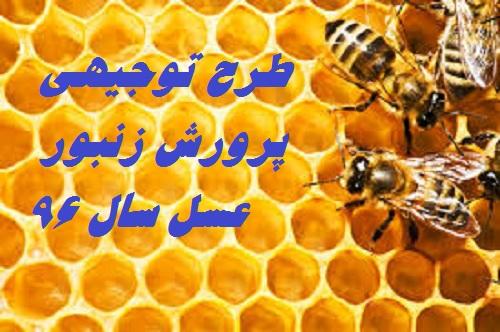 نمونه طرح توجیهی پرورش زنبور عسل سال ۹۶