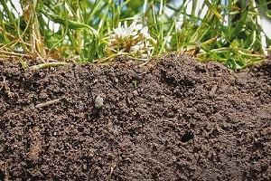 تحقیق درباره  عوامل هوادیدگی خاک