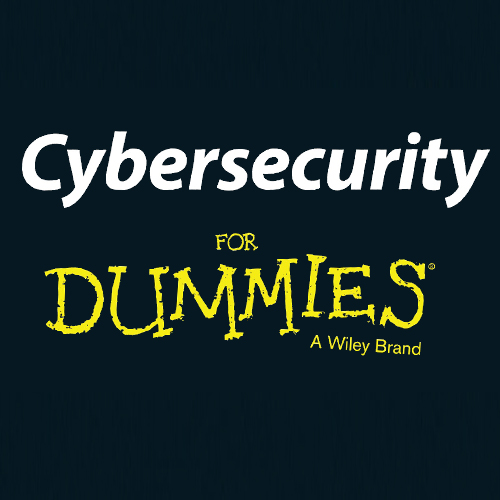 CyberSecurity 4 Dummies