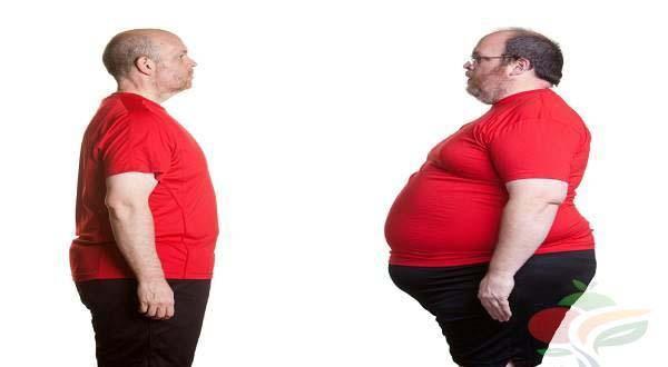 کتاب اموزش کاهش وزن در یکماه تضمینی