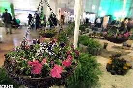 زمينههاي ايجاد کسب و کار  در صنعت گل و گياهان زينتي