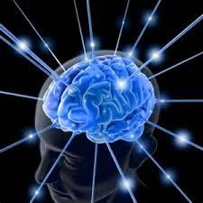 انواع شبکه های عصبی و کاربرد آنها در الکترونیک