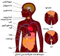 دانلود پاورپوینت   هورمون – آشنایی با نقش کارکردها و انواع هورمون در بدن در 47 اسلاید