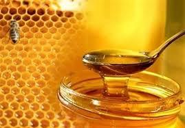 دانلود پاورپوینت  صنایع غذایی –تغذیه - عسل  در 23 اسلاید کاربردی و کاملا قابل ویرایش