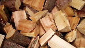 دانلود  پاورپوینت مواد و مصالح ساختمانی - چوب ( تنها مصالح تجدیدپذیر )