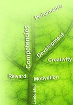 دانلود مقاله استراتژی کارراهه شغلی