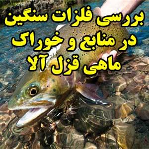 بررسی فلزات سنگین در منابع و خوراك ماهی قزل آلا