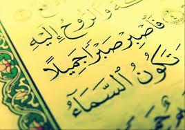 نظام رهنمودهای قرآنی و رابطه آن با ضوابط بهداشت