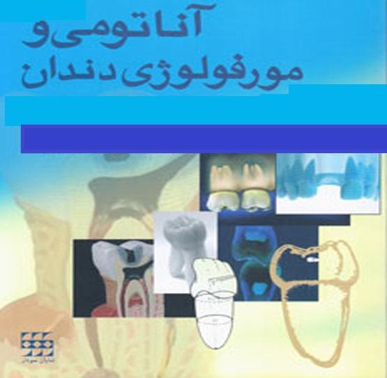 دانلود جزوه آناتومی ومرفولوژی دندان (پاورپوینت )